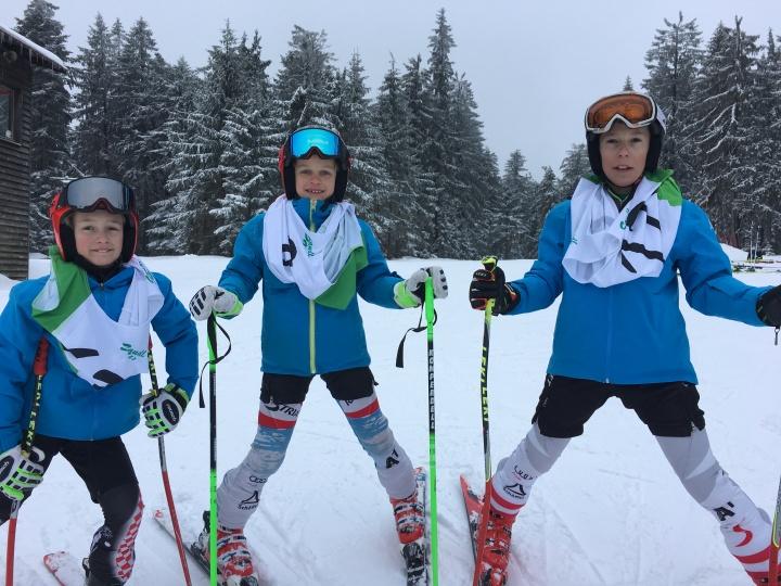 Bezirksmeisterschaften Ski Alpin inSandl